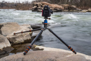 Best Tripod For Bird Photography